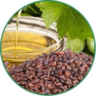 Vitis Vinifera Grape Seed Oil
